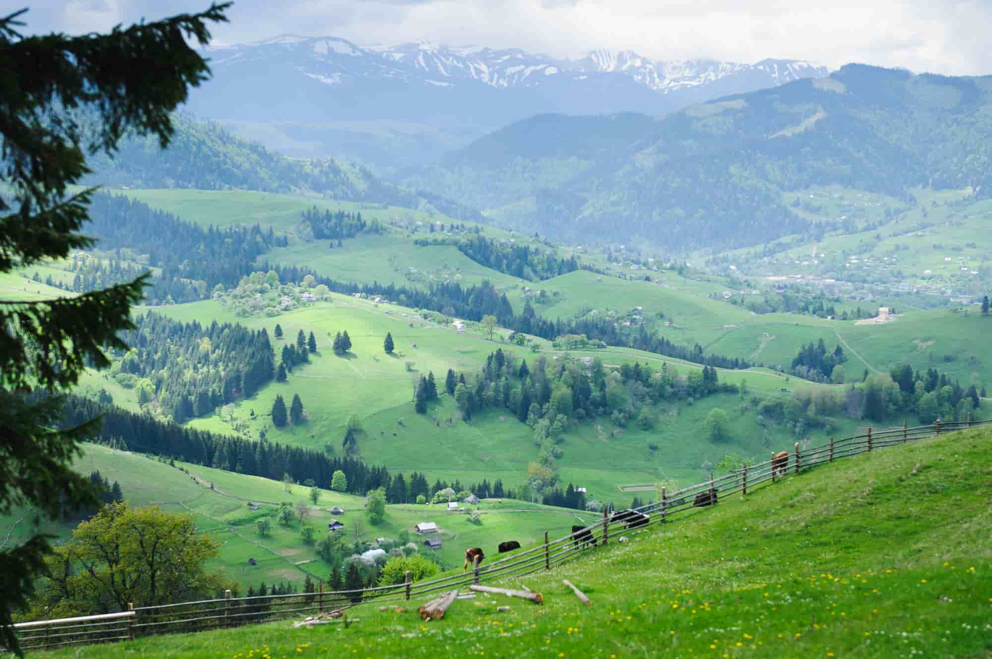 Other places in Transcarpathia